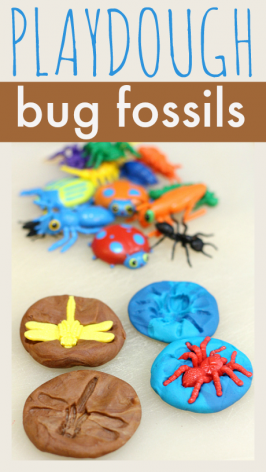 Playdough Bug Fossils