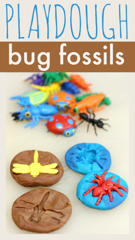insects activities for preschoolers playdough bug fossils no time for flash cards 860