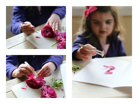 flower fine motor exploration