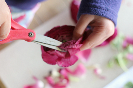 flower lab exploration for kids