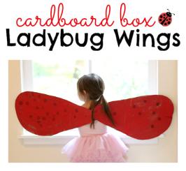 Ladybug Wings Costume