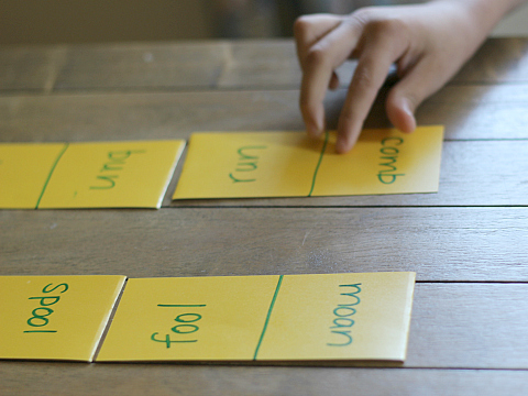 rhyming dominoes and rhyming match game