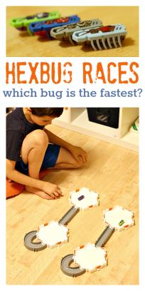 hexbug activities for kids
