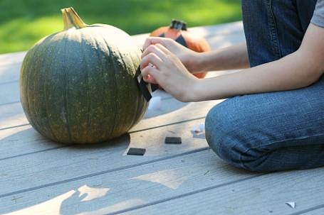 no mess creeper pumpkin