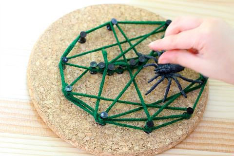 spider web activity