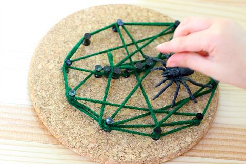 spider web activity