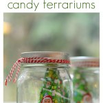 Handmade Christmas Gifts – Candy Terrariums
