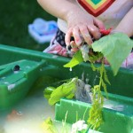 Water Table Activity – Make A Mess and Explore!