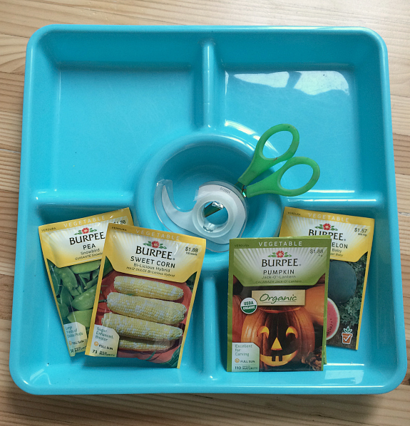 seed tray activity for kids