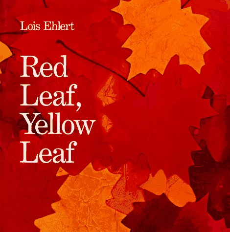 Red-Leaf-Yellow-Leaf-17