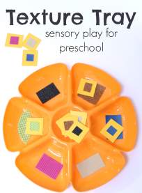 5 senses activity