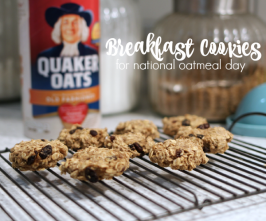 National Oatmeal Day – Making Breakfast with Kids ( and great vegan oatmeal cookies )