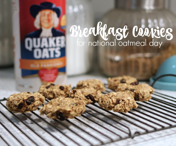 oatmeal cookies no eggs no wheat