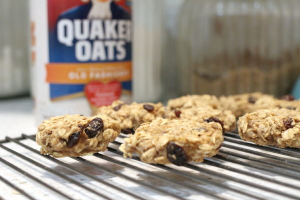 vegan oatmeal cookies
