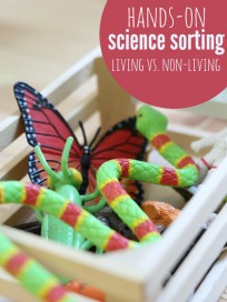 hands on science sorting tray for preschool