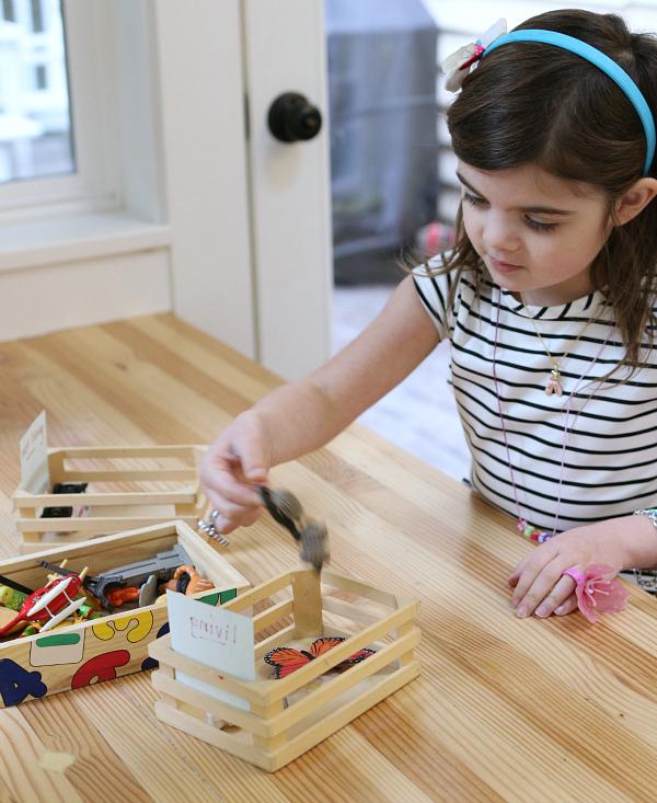 science sorting for kids