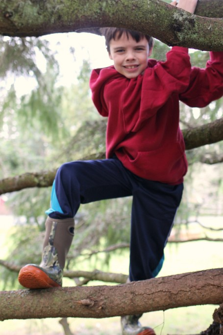 play in a tree - a perfectly fun way to play outside