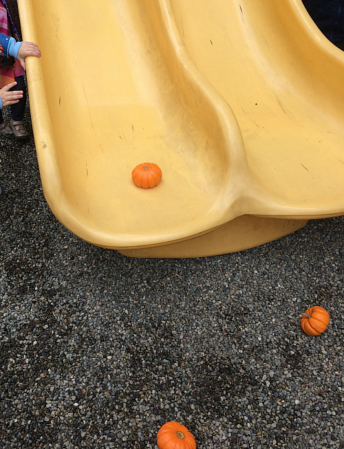 preschool physics pumkin rolling