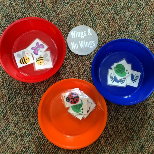preschool science circle time to free choice