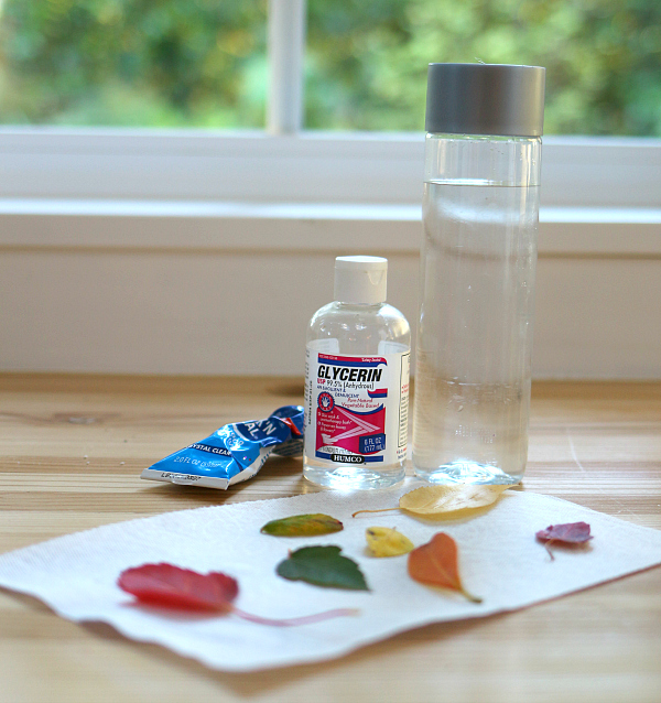 preschool-science-fall-leave-nature-bottle