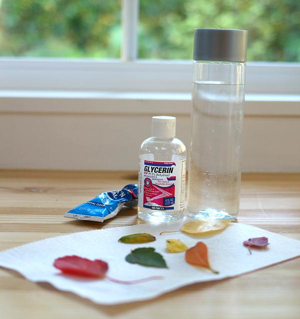 preschool-science-fall-leave-nature-bottle