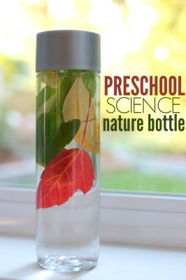 Preschool Science – Fall Nature Bottle