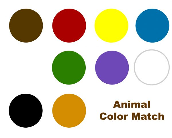 Colors That Match With Brown color matching activity for brown bear brown bear, what do you see