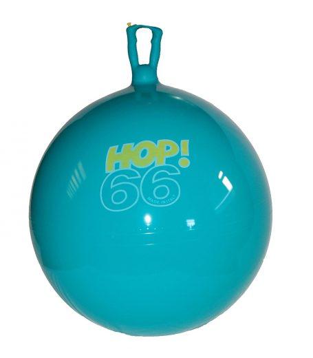 hoppy-ball-gross-motor