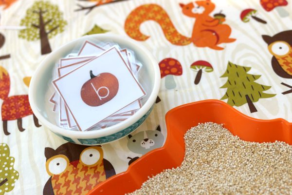 fall-sensory-writing-tray-early-literacy-no-time-for-flash-cards