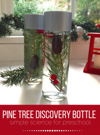 Winter sensory bottle for preschool. Make this Pine Tree Discovery bottle for preschool science area.