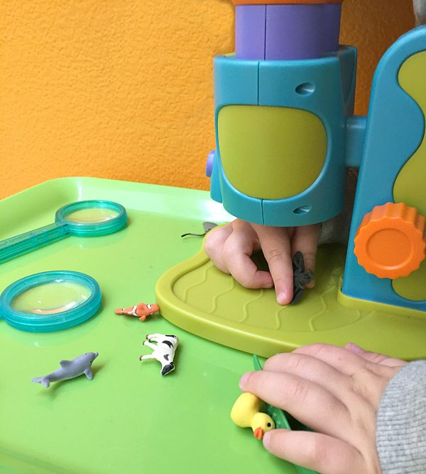 preschool microscope activities