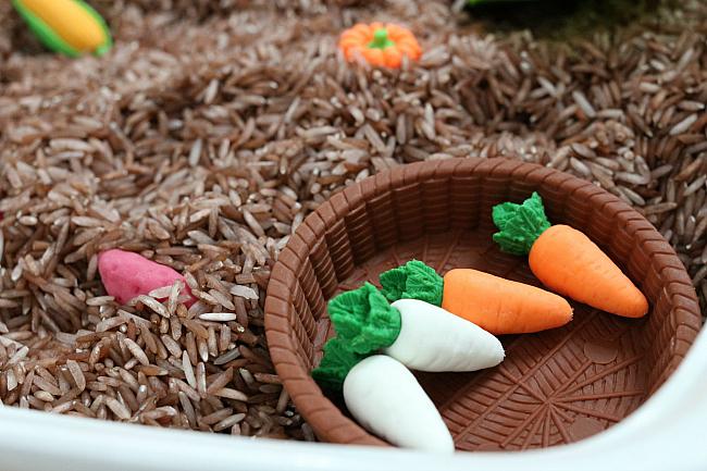 farm garden sensory bin