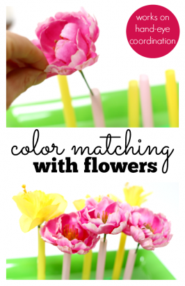 Color Matching – Spring Preschool Activity