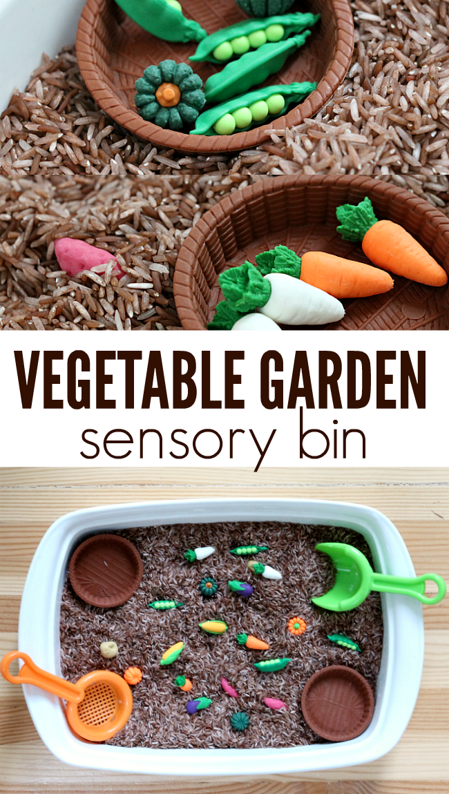 Kindergarten classroom table - Vegetable Garden Sensory Bin No Time For Flash Cards