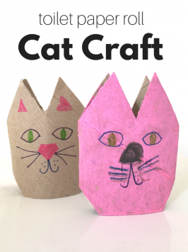 Paper Roll Cat Craft