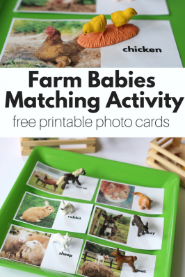 Farm Matching Activity with FREE Printables