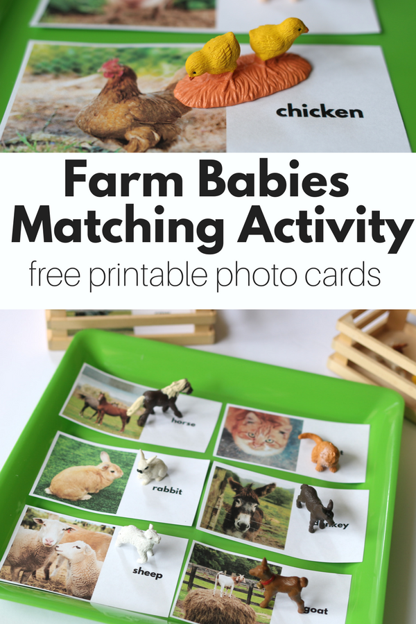 Farm Matching Activity With Free Printables No Time For Flash Cards