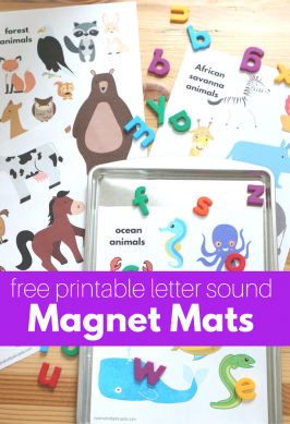 Letter Sounds Magnet Mats