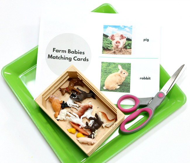 farm babies activity for preschool