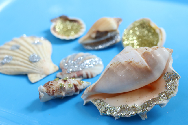 Summer art project beach shell art