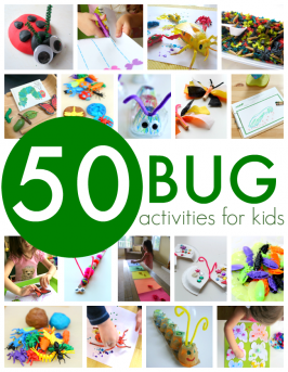 bug theme for preschool