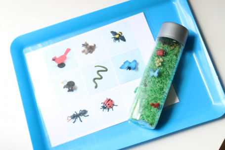 discovery bottle find and match mat activity for preschool