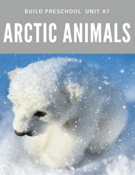 Arctic Animals Build Preschool Unit #7 12