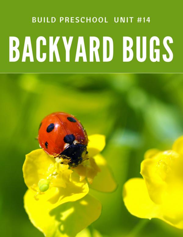 preschool bug theme