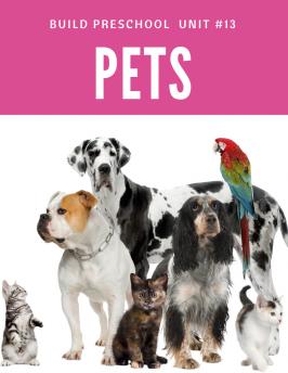 Pets 13