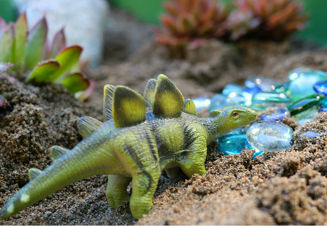 dinosaur play sand and water table