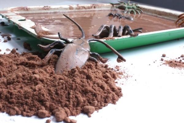 Bugs in muck 3
