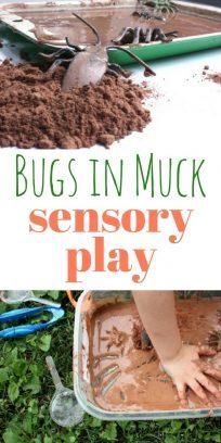bugs in muck
