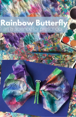 Crafting with Science: Rainbow Butterfly
