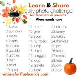 Learn & Share  Instagram Photo Challenge – Starts November 1st!